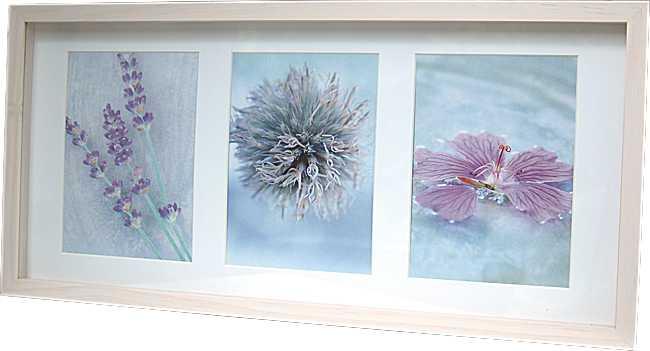 galerie holz bilderrahmen 3x10x15 und 3x13x18 cm glas passepartout ebay. Black Bedroom Furniture Sets. Home Design Ideas